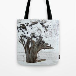 Stumpy and the Rock Wall in Winter White Tote Bag