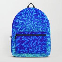 Fractal Gradient WATER Backpack