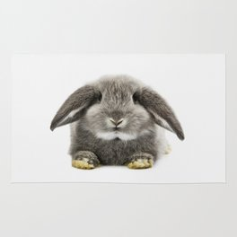 Bunny rabbit sitting Rug