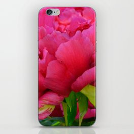 Dark Pink Tree Peony by Teresa Thompson iPhone Skin