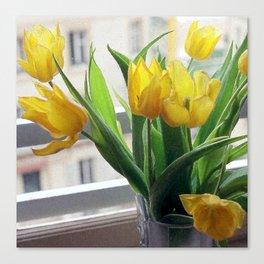 View through Yellow Tulips Canvas Print