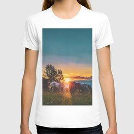 Horse Sunrise (Color) T-shirt