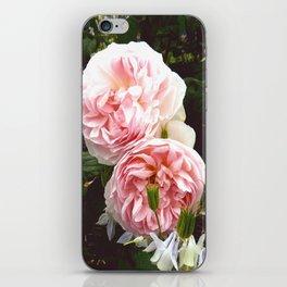 Roses III iPhone Skin