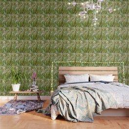 Green Barley, Textures44 Wallpaper
