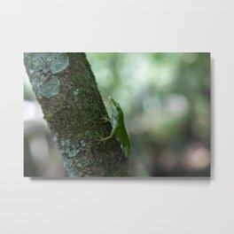 Green Anole Metal Print
