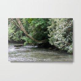 Streams of Living Water Metal Print