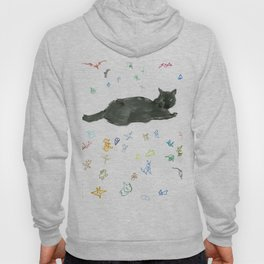 cat and toy Hoody