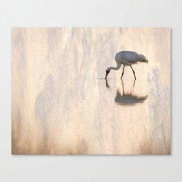 Endangered Canvas Print