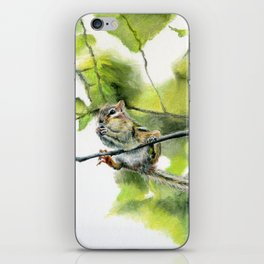 Balancing Act by Teresa Thompson iPhone Skin