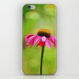 Pink Pop Coneflower iPhone Skin