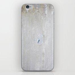 Canvas. iPhone Skin