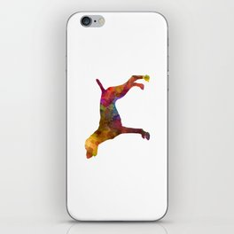 German Shorthaired Pointer in watercolor iPhone Skin