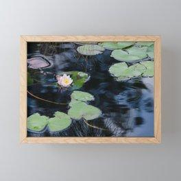 Soft Shade by Teresa Thompson Framed Mini Art Print