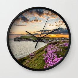 Freshwater Bay Sea Thrift Sunset Wall Clock
