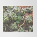 Botanical Gardens - Succulent #882 by naturalcollective