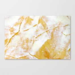 Abstraction marble texture Canvas Print