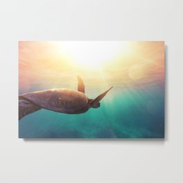Sea Turtle - Underwater Nature Photography Metal Print