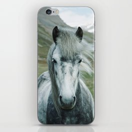Grey Horse iPhone Skin
