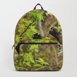 Spring Migration Fallout; 4 swallow species, 1 branch Backpack
