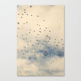 Starlings and Sky iii - Silhouetted Birds and Pastel Clouds Canvas Print