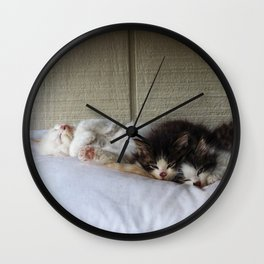 Sleeping Beauties Wall Clock