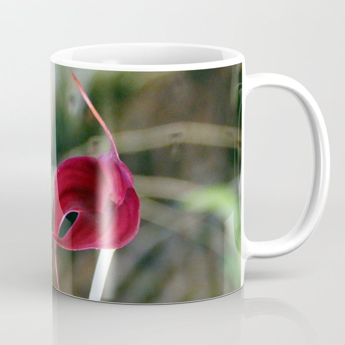 A Misty Masdevallia Coffee Mug
