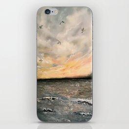 Birds on the ocean iPhone Skin