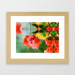 Bougainvillea flower Framed Art Print