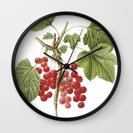 Botanical Print, Red Currant, Ribes Rubrum Wall Clock
