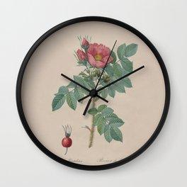 Rosa JP Redoute Wall Clock