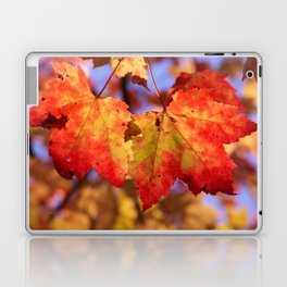 Autumn in Canada - Maple leafs Laptop & iPad Skin