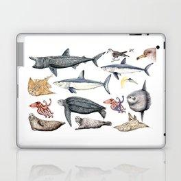 Marine wildlife Laptop & iPad Skin
