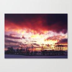 Arctic Warmpth Canvas Print