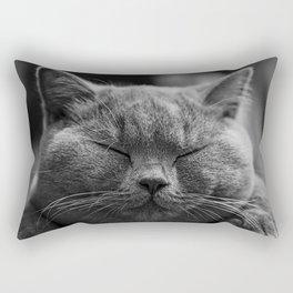 Cat, Cats - Love Cats Rectangular Pillow