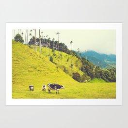 Beautiful Bucolic Countryside in Colombia Fine Art Print Art Print