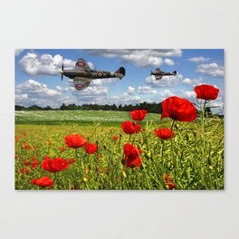 Spitfires and Poppy field Canvas Print