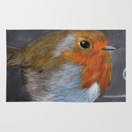 English Robin Painting Rug