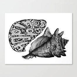 Happiness Shell Canvas Print