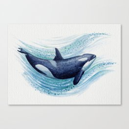 """""""Orca Spash"""" by Amber Marine ~ Watercolor Killer Whale Painting, (Copyright 2016) Canvas Print"""