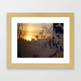 Frost Tracery 3 Framed Art Print