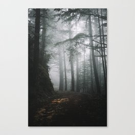 Butano Canvas Print