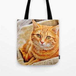 Cute red cat Tote Bag