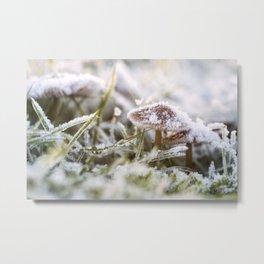 Frozen mushroom Metal Print