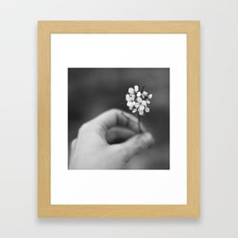 miracle Framed Art Print