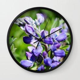 Purple Lupine Photography Print Wall Clock
