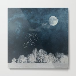 Night in Blue and White Metal Print